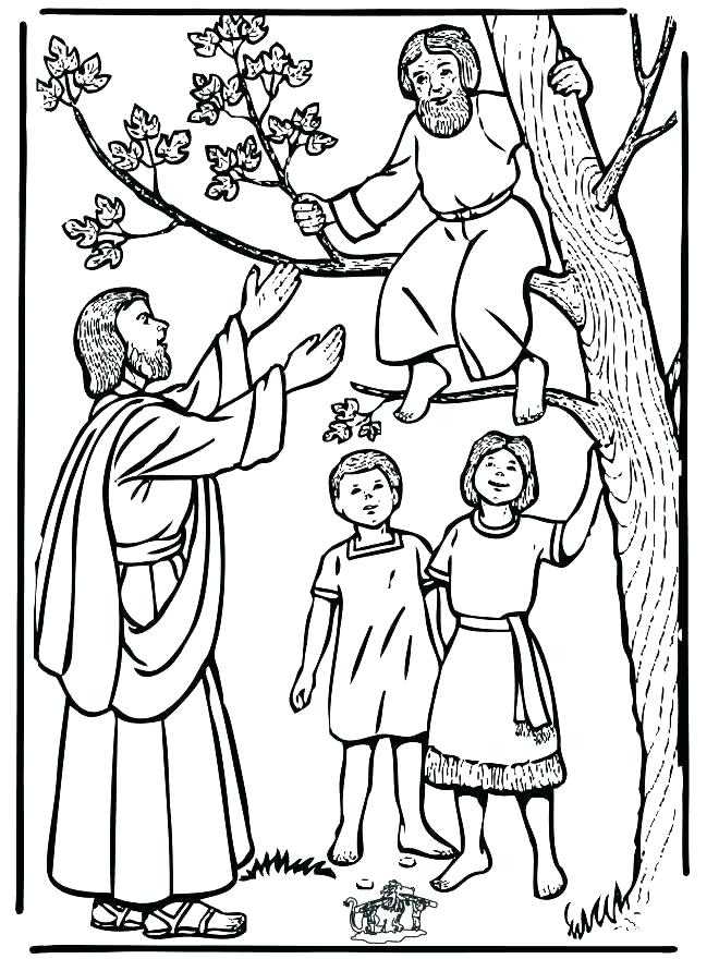 660x880 Preschool Bible Story Coloring Pages And Christian Coloring Pages