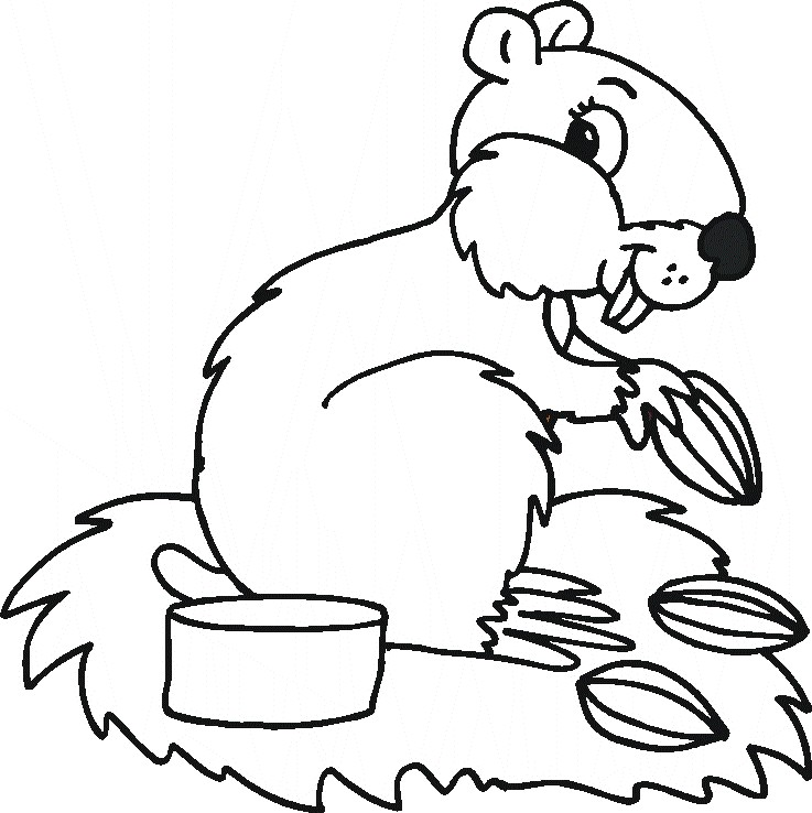 737x738 Coloring Pages Of Animals The Sun Flower Pages