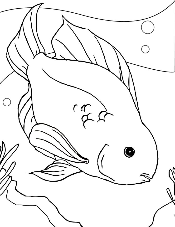 736x952 Best Animals Images On Children Coloring Pages