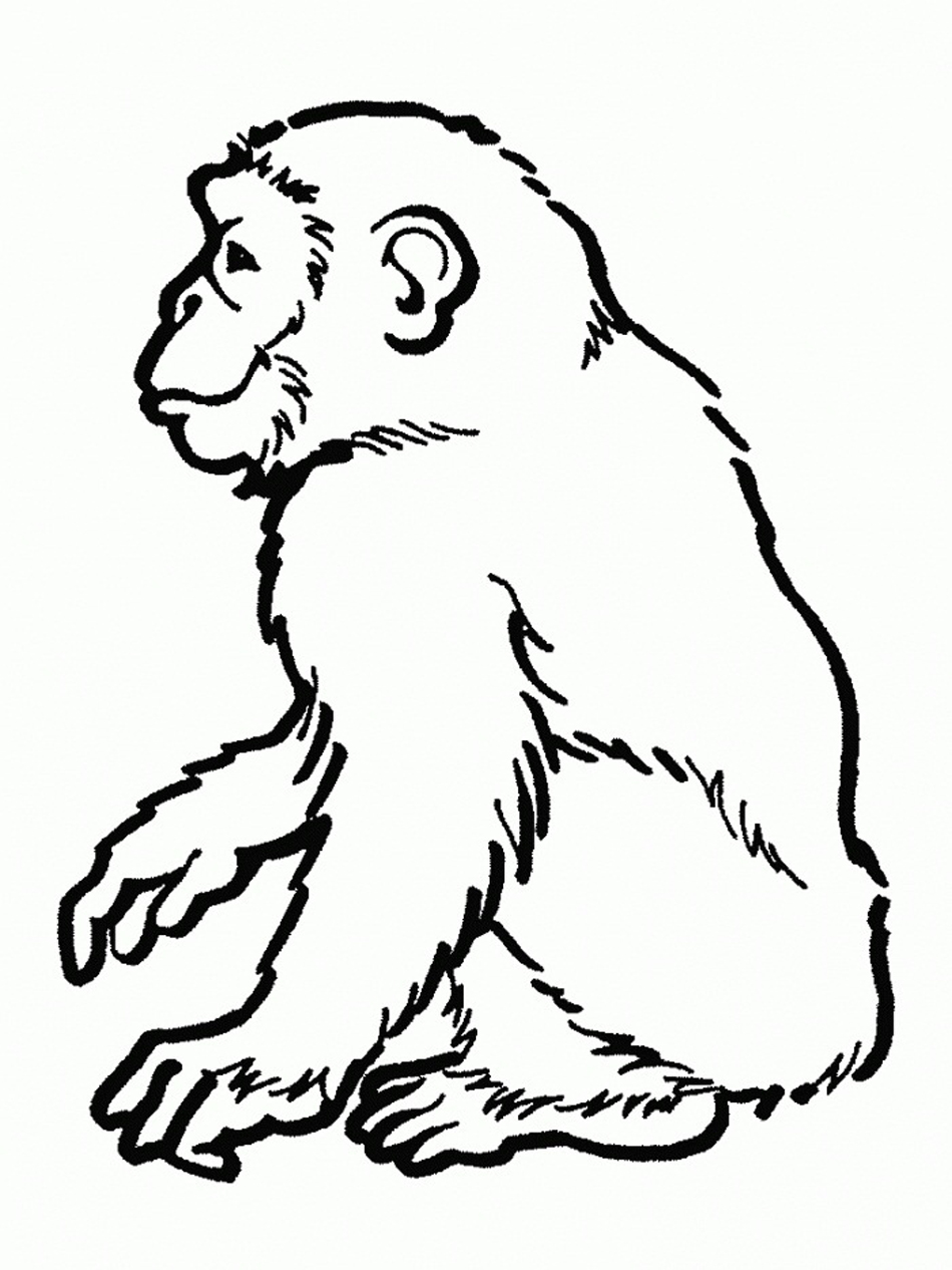 950x1266 Free Printable Chimpanzee Coloring Pages For Kids
