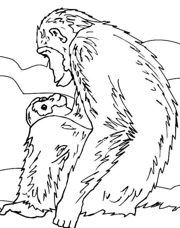 600x758 Chimpanzee Animal Coloring Pages Chimpanzee Coloring Page