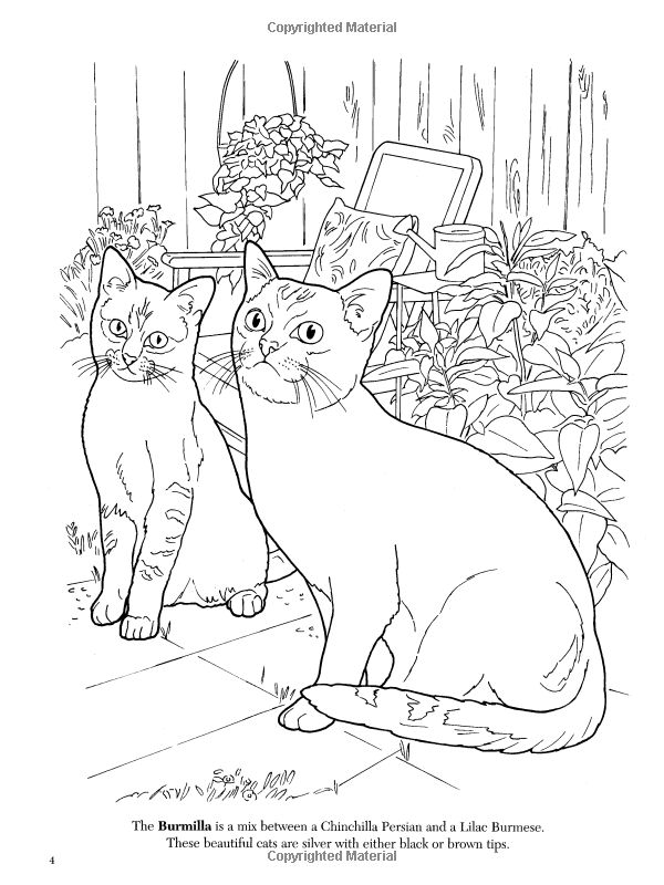 600x800 Best Cat Coloring Pages Images On Coloring Books