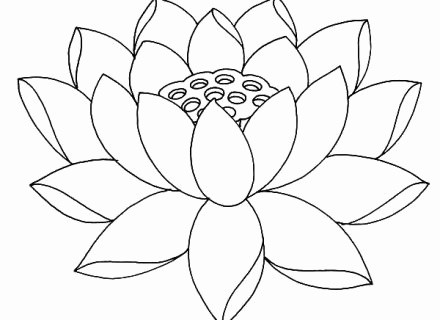 440x320 Lotus Flower Coloring Page Unique Lotus Coloring Pages Luxury
