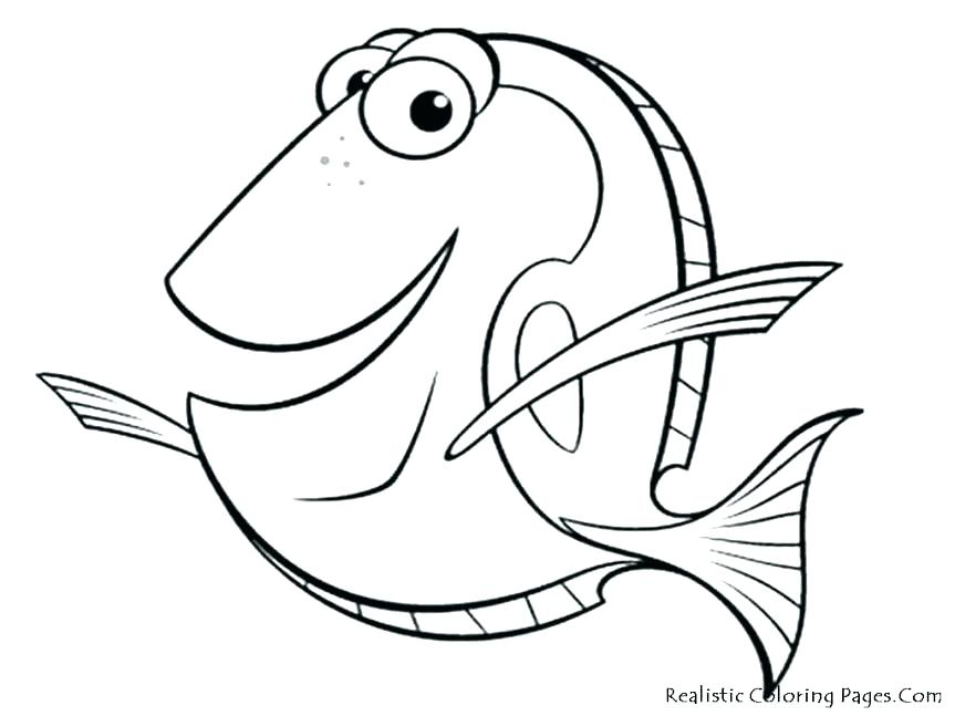 863x647 Salmon Coloring Pages Common Trout Coloring Page Brown Trout