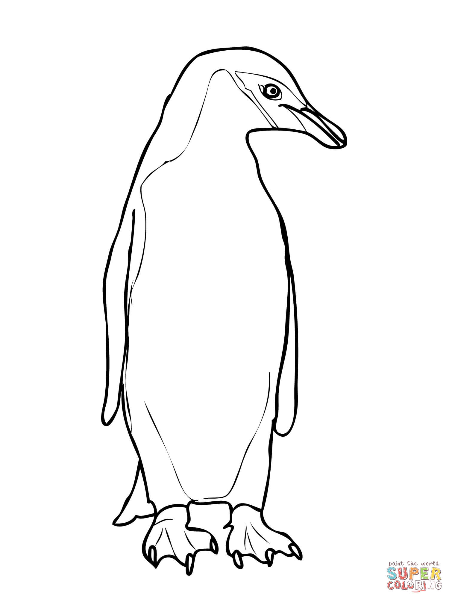 1500x2000 Chinstrap Penguin Coloring Page Free Printable Coloring Pages