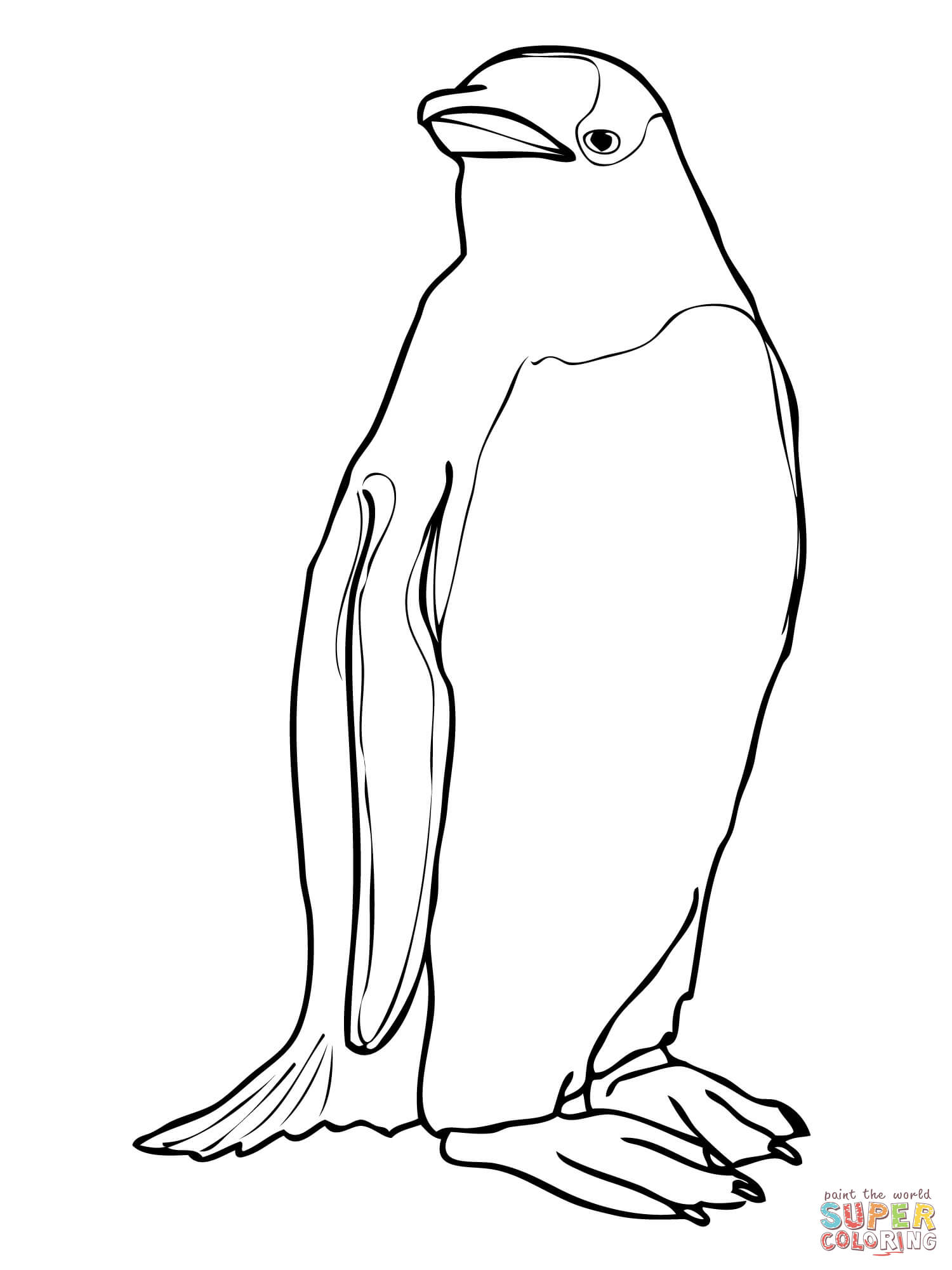 1500x2000 Collection Of Solutions King Penguin Coloring Pages For Gentoo