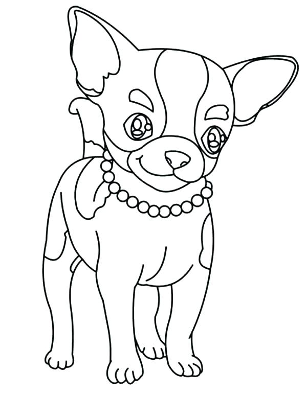 600x775 Teacup Chihuahua Coloring Pages Chihuahua Coloring Page Chihuahua