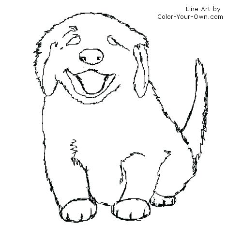 500x500 Here Are Realistic Dog Coloring Pages Pictures Retriever Coloring
