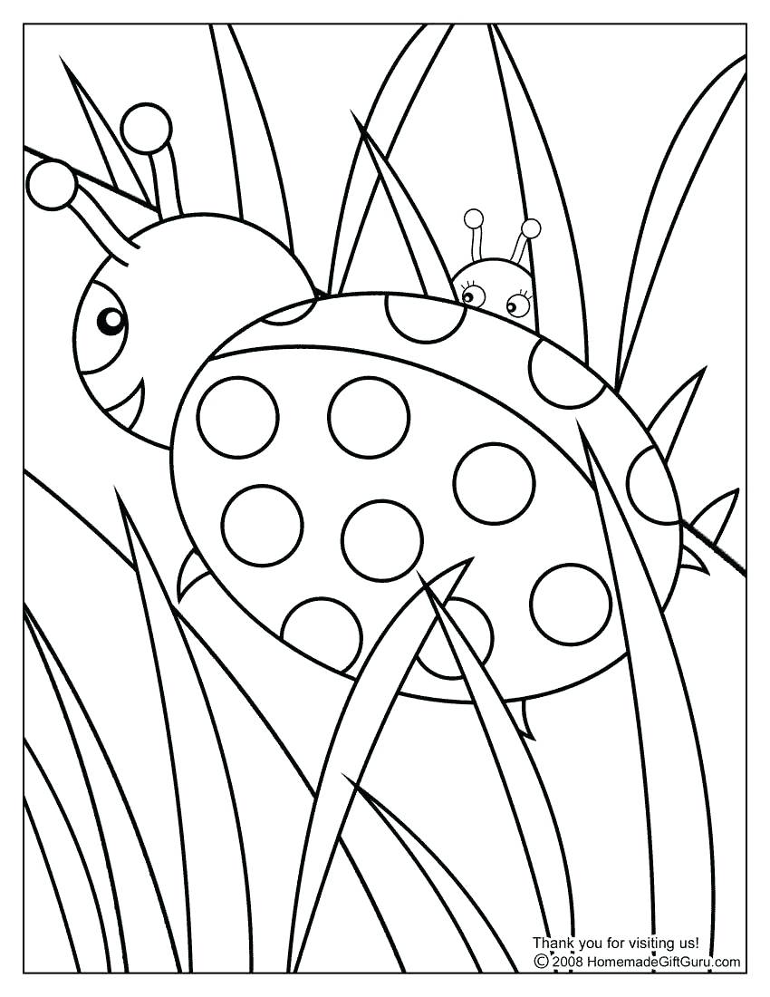 850x1100 Coloring Pages Free Printable Color Pages Frog Coloring Spring