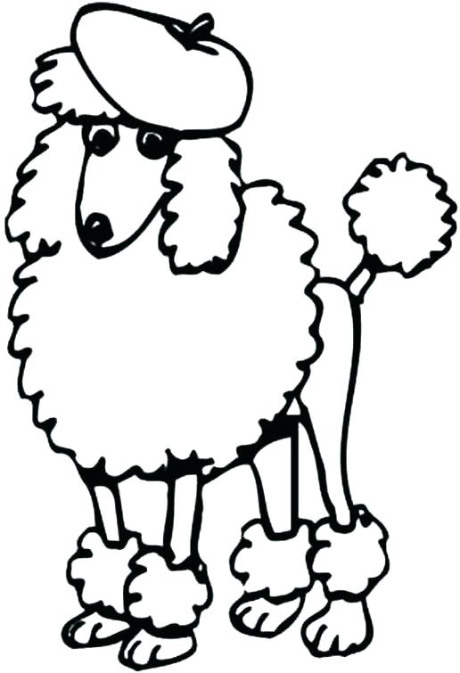 516x755 Poodle Coloring Page A Fat Chow Chow Poodle Coloring Page Free