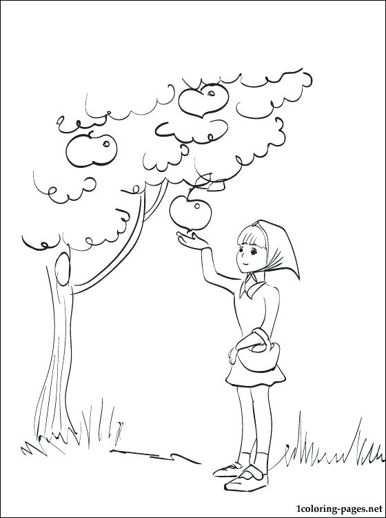 560x750 Coloring Harvest Coloring Page Autumn Christian Pages Harvest