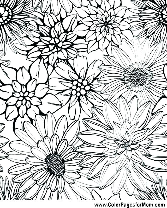 640x799 Advanced Coloring Pages To Print Advanced Coloring Pages Advanced