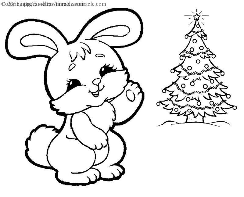 Christmas Bunny Coloring Pages