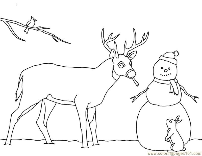 800x618 Christmas Card Deer Snowman Coloring Page