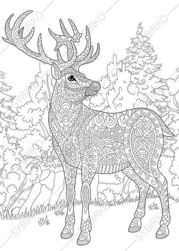 570x798 Adult Coloring Pages Christmas Deer