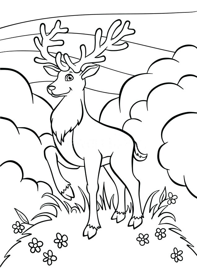 636x900 Deer Coloring Pages Download Coloring Pages Animals Little Cute
