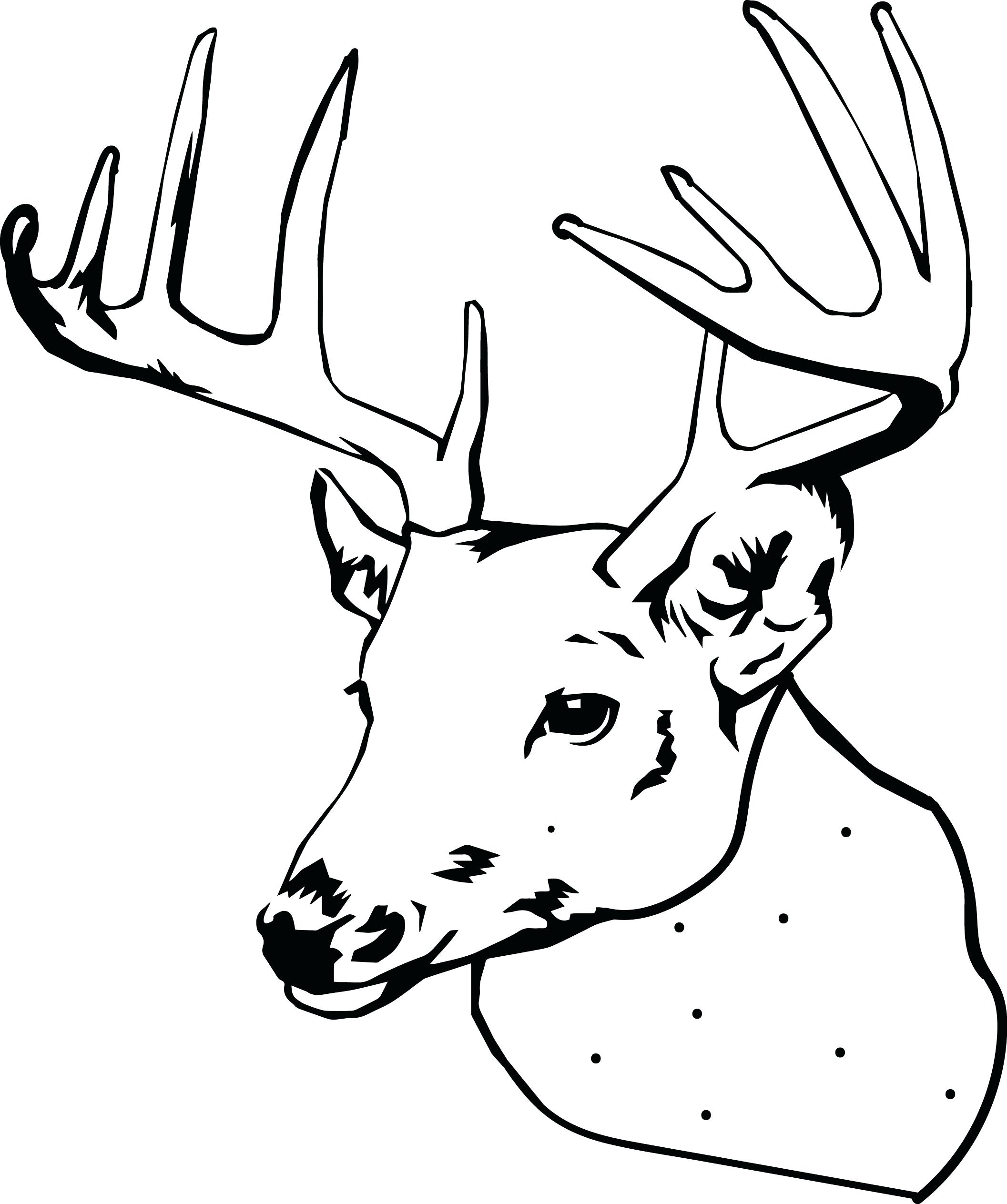 2113x2527 Inspiration Coloring Pages Deer Coloring Pages Funny Cartoon Baby