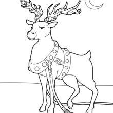 220x220 Santa's Reindeer Coloring Pages