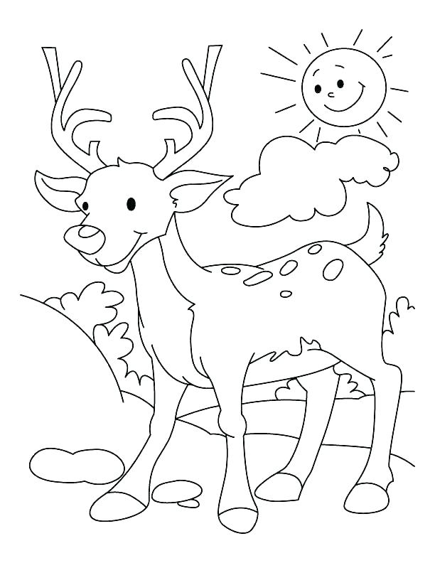 612x792 Christmas Reindeer Coloring Pages Coloring Pages Reindeer Sea