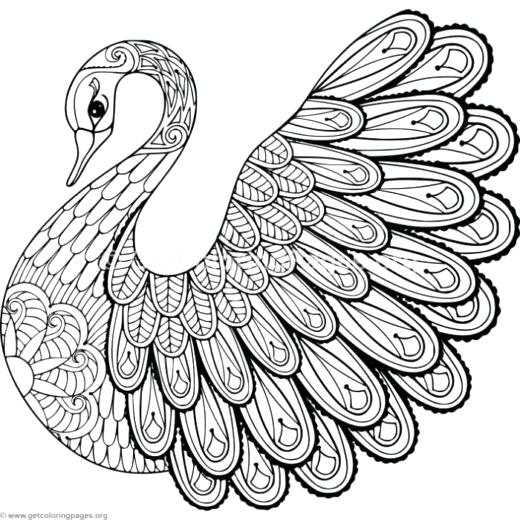 520x520 Doodling Coloring Pages Swan Coloring Pages Christmas Doodles