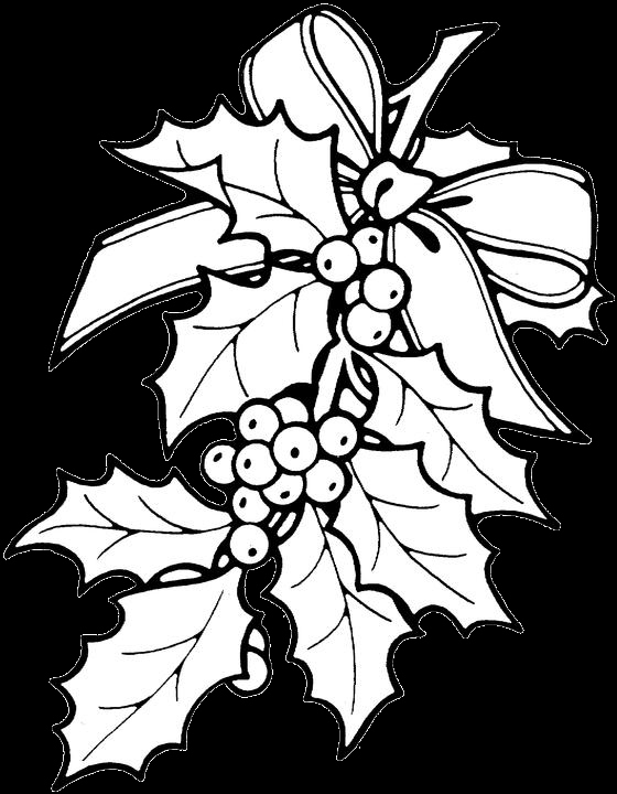 560x720 Xmas Coloring Pages Inspirational Free Christmas Flower Color