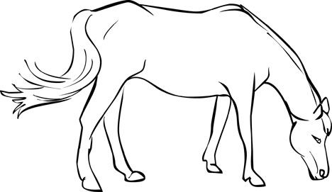 468x271 Free Horse Coloring Pages Pixels