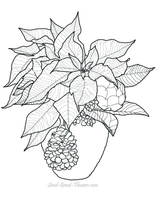 612x792 Mistletoe Coloring Pages Mistletoe Coloring Page Under