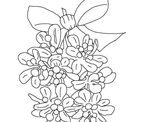500x425 Printable Coloring Sheets Christmas Mistletoe Christmas Mistletoe