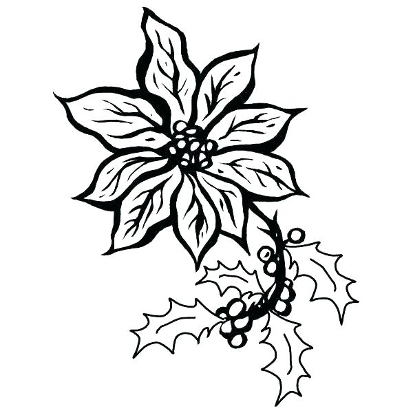 600x600 Mistletoe Coloring Pages