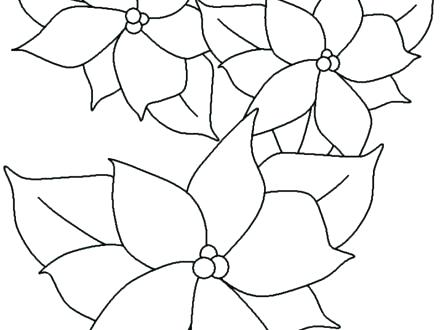 440x330 Coloring Pages For Adults Online Trace Flower Template Merry Happy