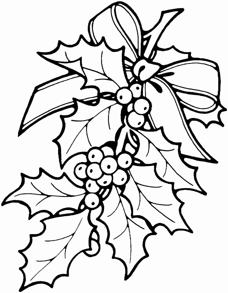 797x1024 Poinsettia Coloring Page Coloring Page