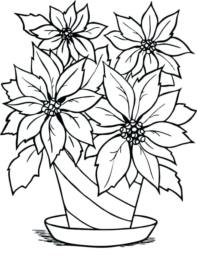 750x1000 Poinsettia Coloring Pages Leaf Coloring Sheet Poinsettia Coloring