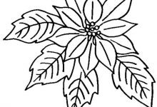 220x150 Attractive Ideas Poinsettia Coloring Pages Book Of Flower