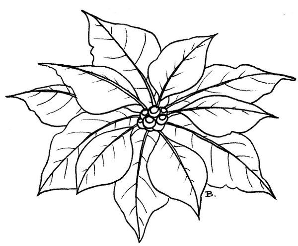 600x494 Beccy's Place November Coloring Pages