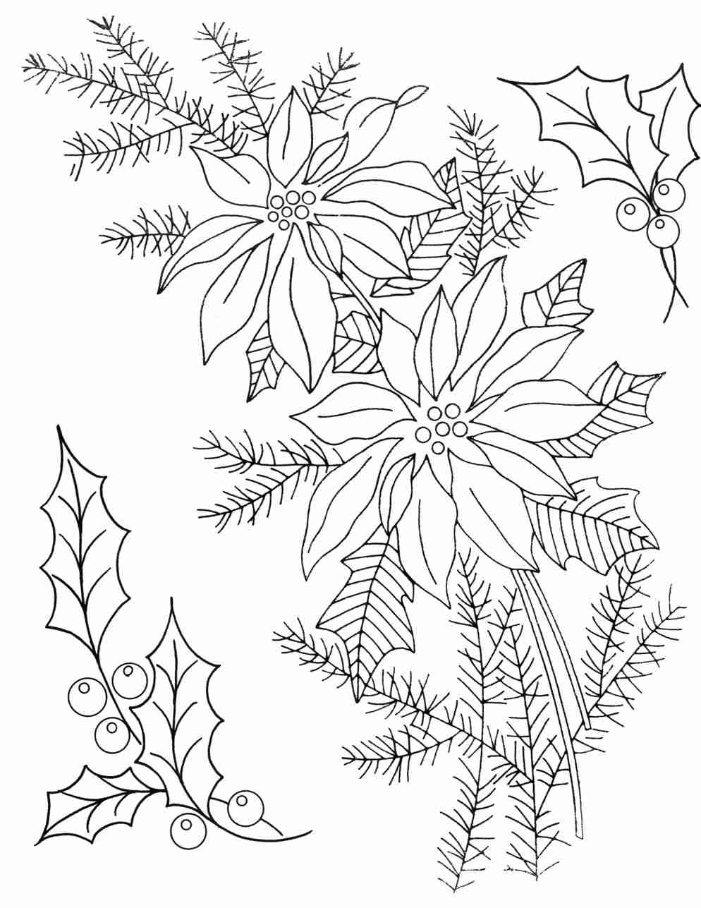994x1287 Christmas Coloring Page For Adults Poinsettia Brilliant Olegratiy