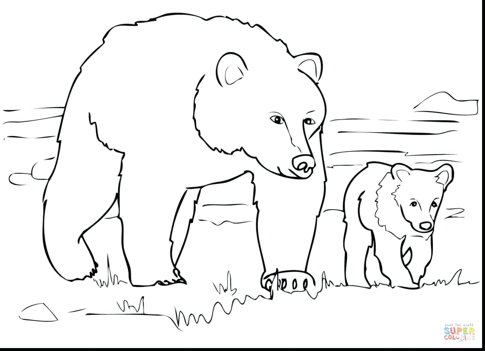 1650x1196 How To Draw Polar Bear Coloring Page Pages Thanksgiving Food