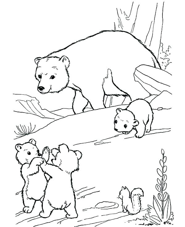 600x734 Polar Bear Coloring Pages Polar Bear Coloring Sheets Polar Bear