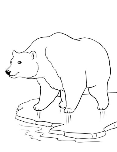 386x500 Polar Bear Coloring Pages Preschool