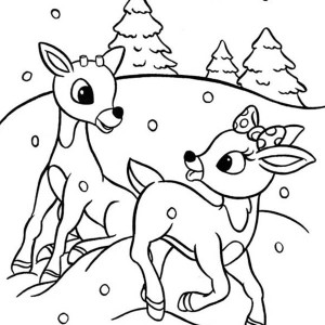 300x300 Reindeer Coloring Pages For Christmas
