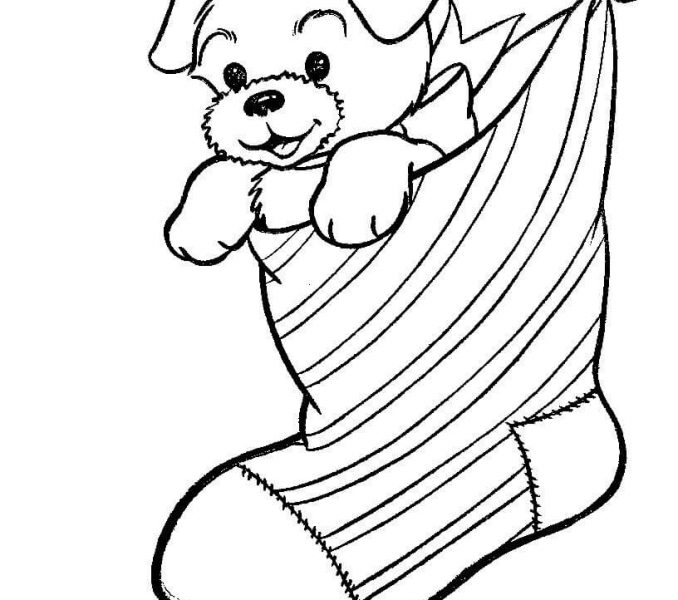 678x600 A Puppy Dog In A Christmas Stocking Coloring