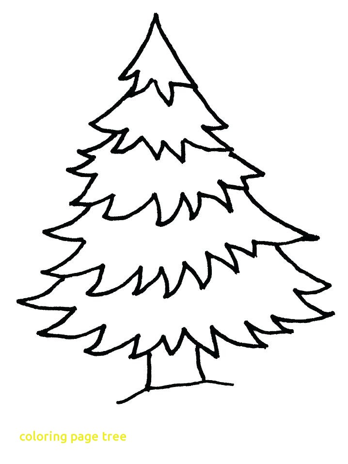 718x957 Coloring Page Tree With Coloring Page Christmas Tree Tree Coloring