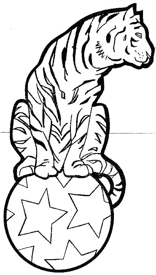 504x886 Circus Coloring Pages Coloring Pages Circus Coloring Page Of Tiger