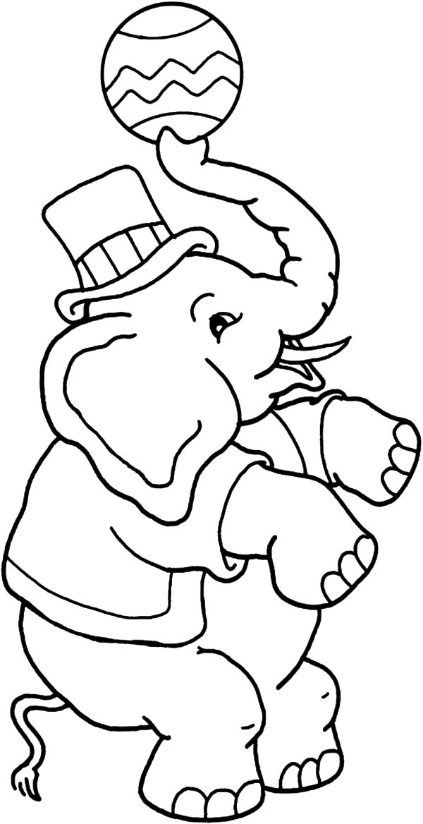 600x1168 Awesome Circus Elephant Coloring Pages Best Place To Color
