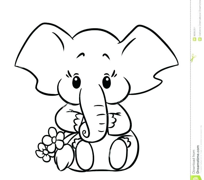 678x600 Elephant Color Page Baby Elephant Coloring Page Cartoon Pages