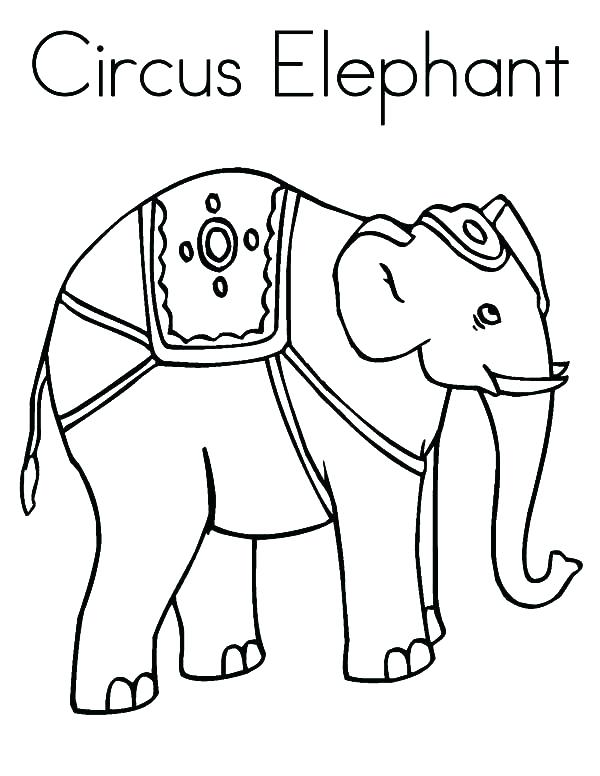 600x776 Elephant Color Page Cute Baby Elephant Coloring Outline Pages