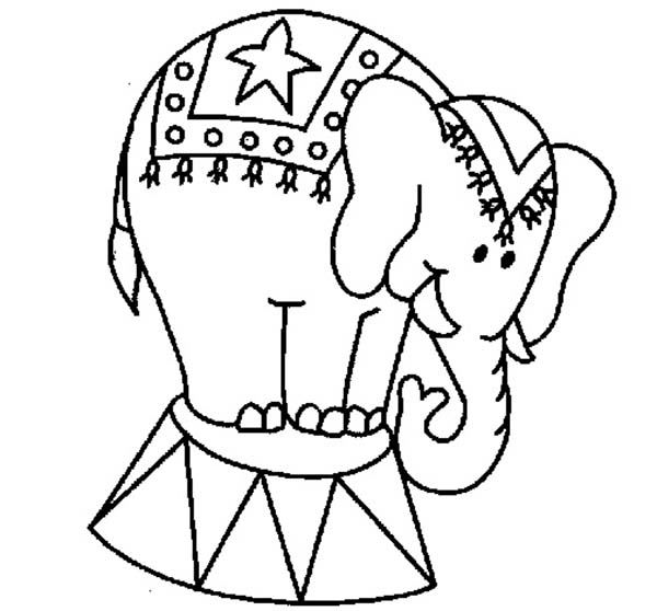 600x558 Performing Circus Elephant Coloring Pages Best Place To Color