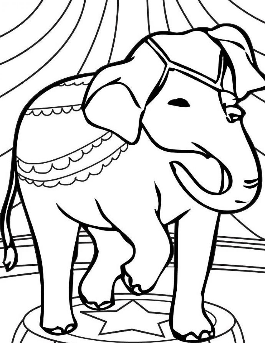 900x1164 Best Of Funny Elephant Coloring Pages