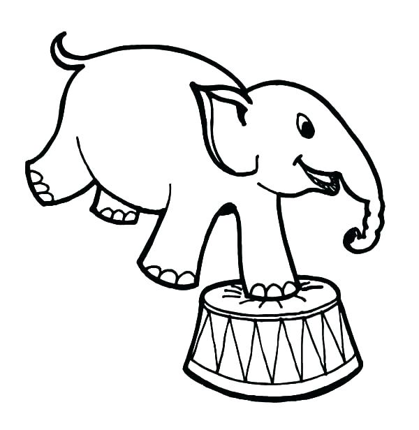 600x616 Circus Coloring Pages Circus Elephant Coloring Page How To Draw