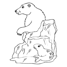 230x230 Top Free Printable Seal Coloring Pages For Toddlers