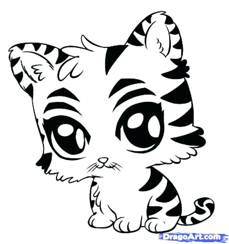 792x843 Paw Print Coloring Page Tiger Paw Coloring Page Paw Print Coloring
